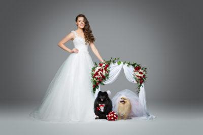Animali domestici al matrimonio